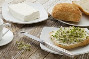 bread-sprout1.jpg