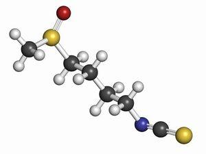 Sulforaphane1.jpg