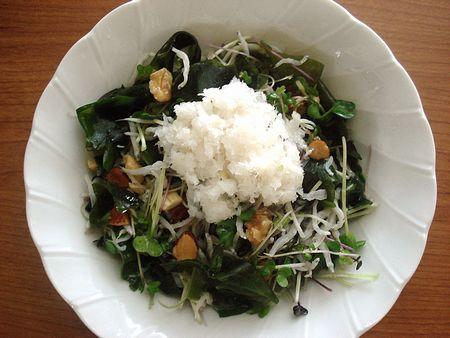 sprout-daikon_salad.jpg