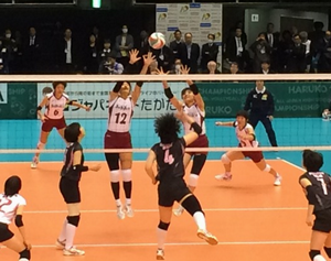 volley_w_21.png